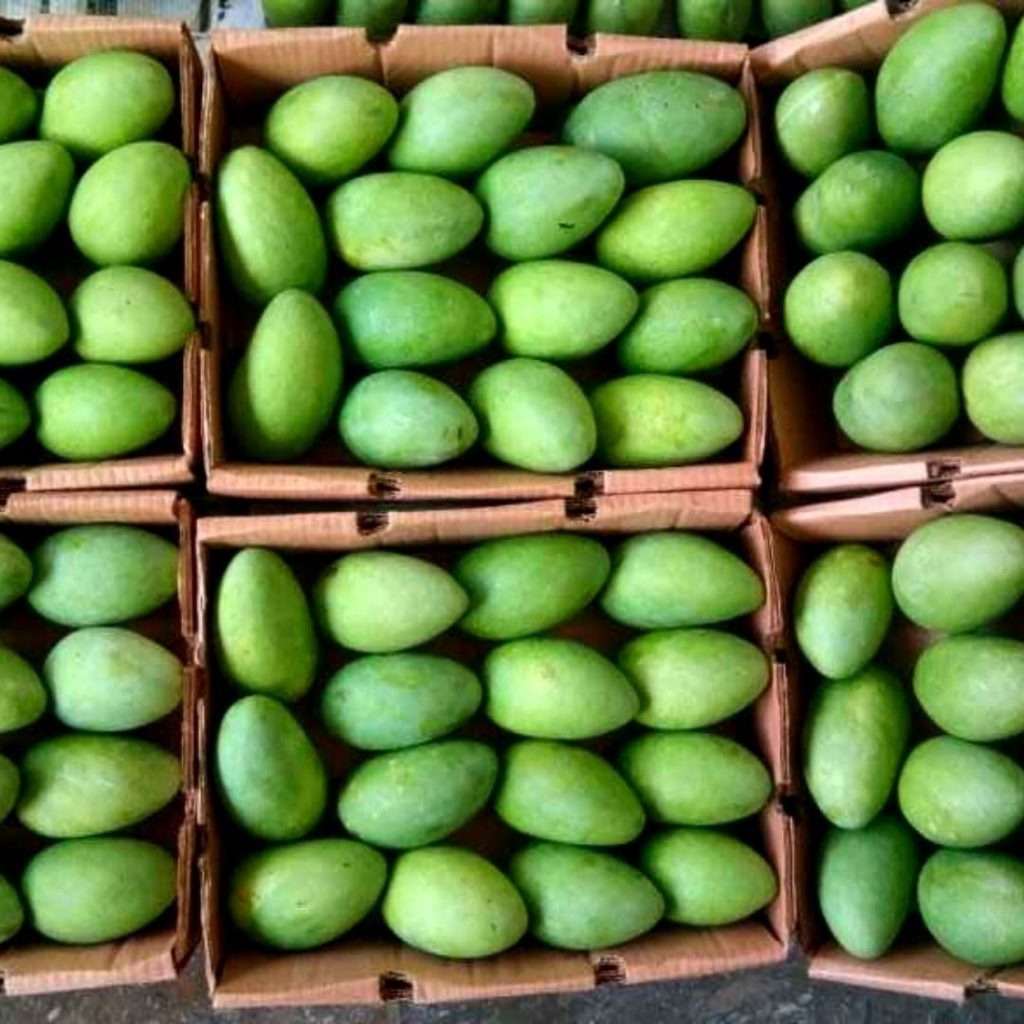Multani Mangoes